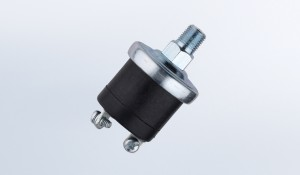 Pressure Switch 15 PSI Normally Open Floating Ground