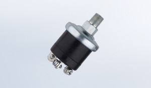 Pressure Switch 4 PSI Dual Circuit Floating Ground